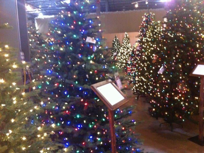 ... Christmas Tree Trade-In Program Brightens Holiday Season-0 ... - Christmas Tree Trade-In Program Brightens Holiday Season Grayslake