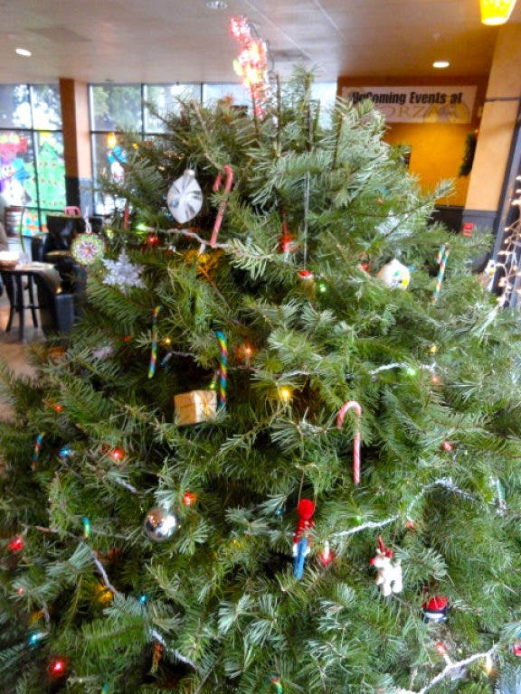 Christmas Tree Recycle.How To Recycle Your Christmas Tree Palm Harbor Fl Patch