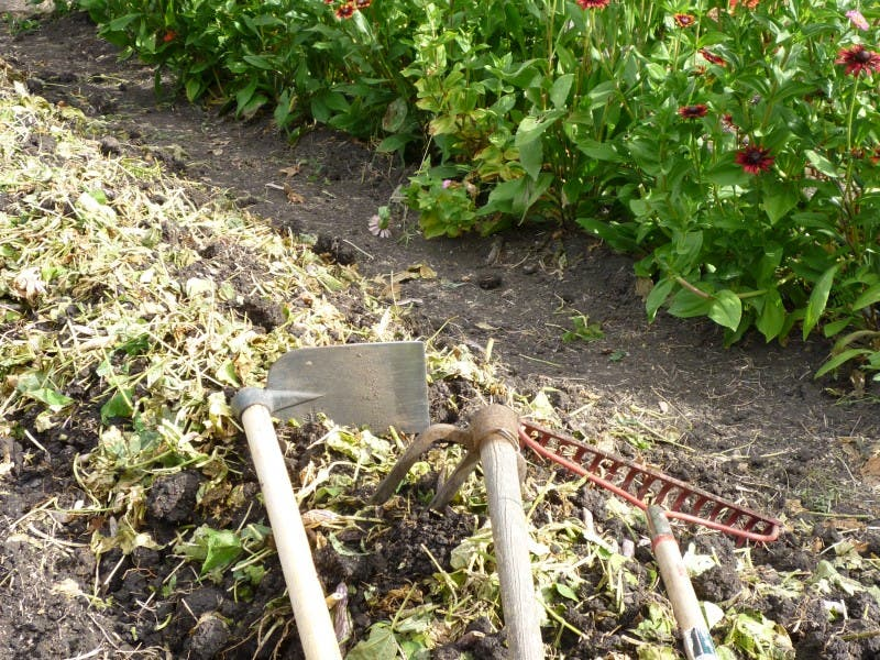 Registration Open For Teaneck Community Gardens