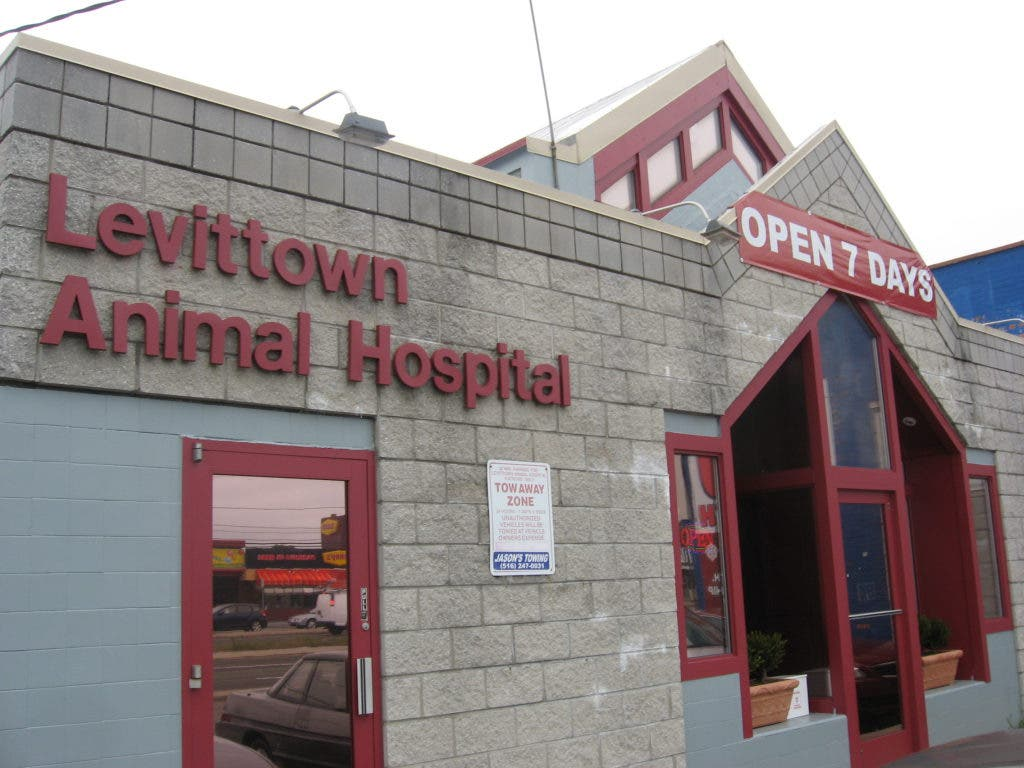 Levittown Animal Hospital Works Hard To Be State Of The Art