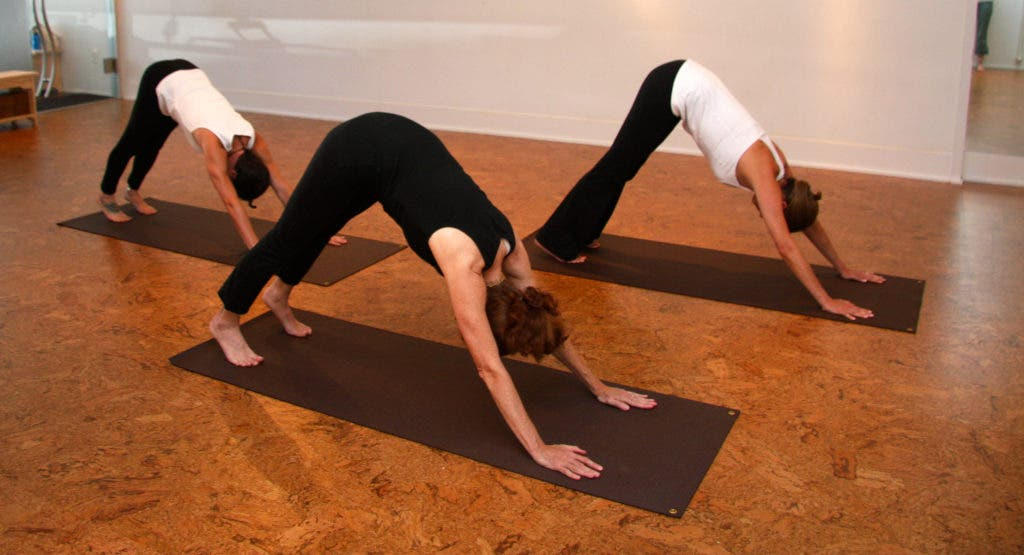 What Is Downward Facing Dog Anyway Bronxville Ny Patch