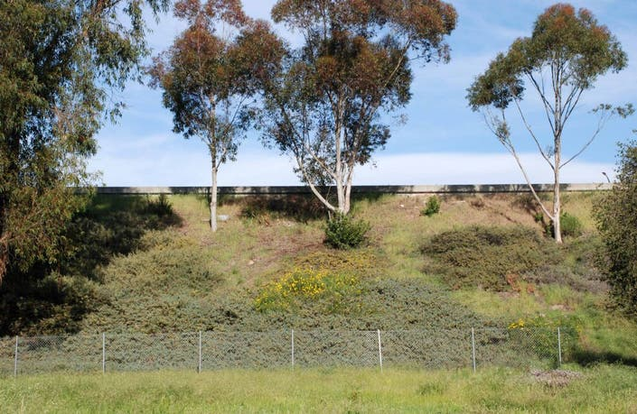 Making Noise: Petition Drive Seeks to Preserve Freeway Sound