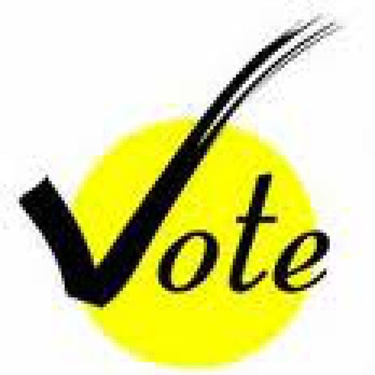 Largo City Elections: Know Your Candidates | Largo, FL Patch