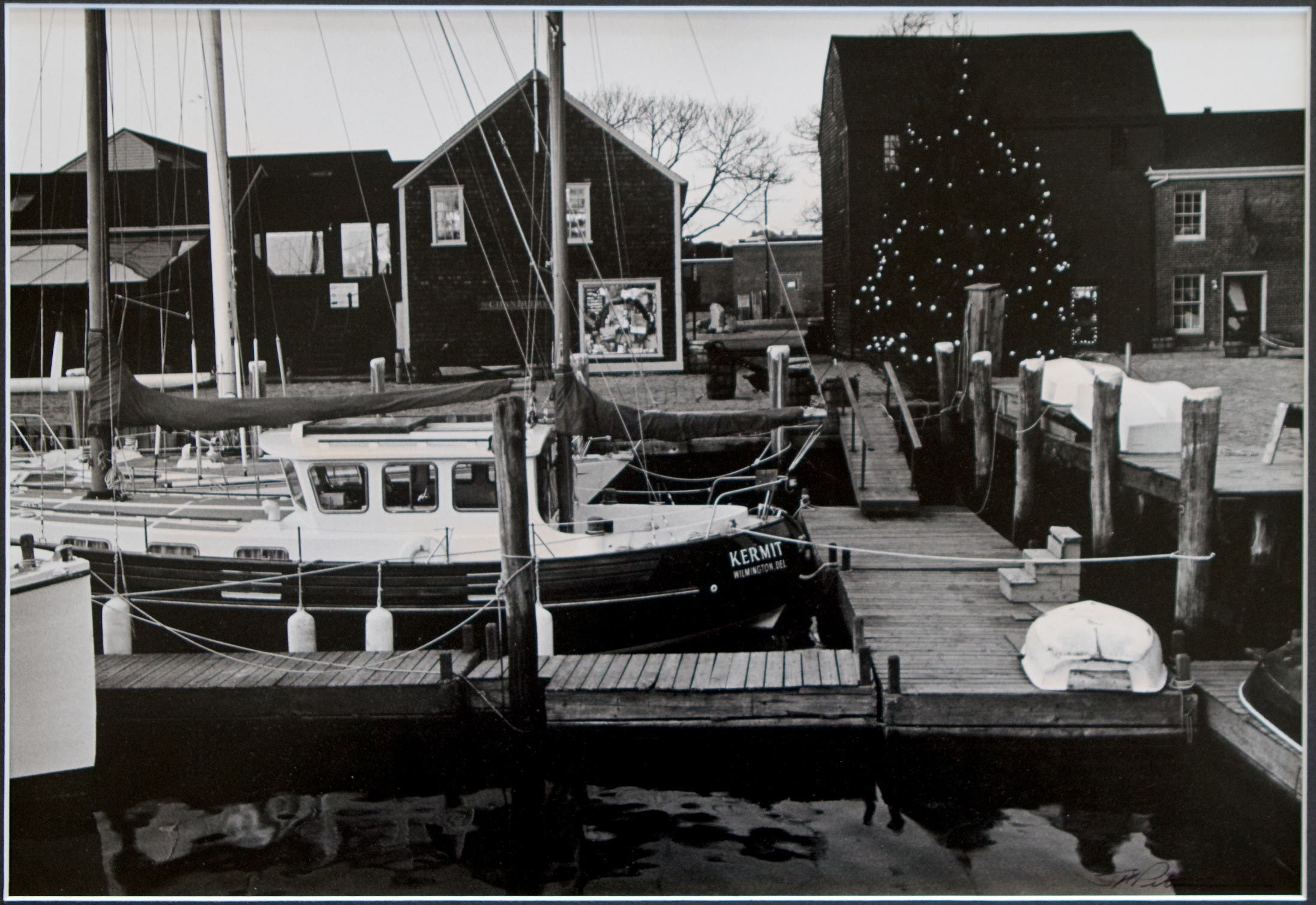 To Do: Christmas Tree Lighting at Bowen's Wharf in Newport ...