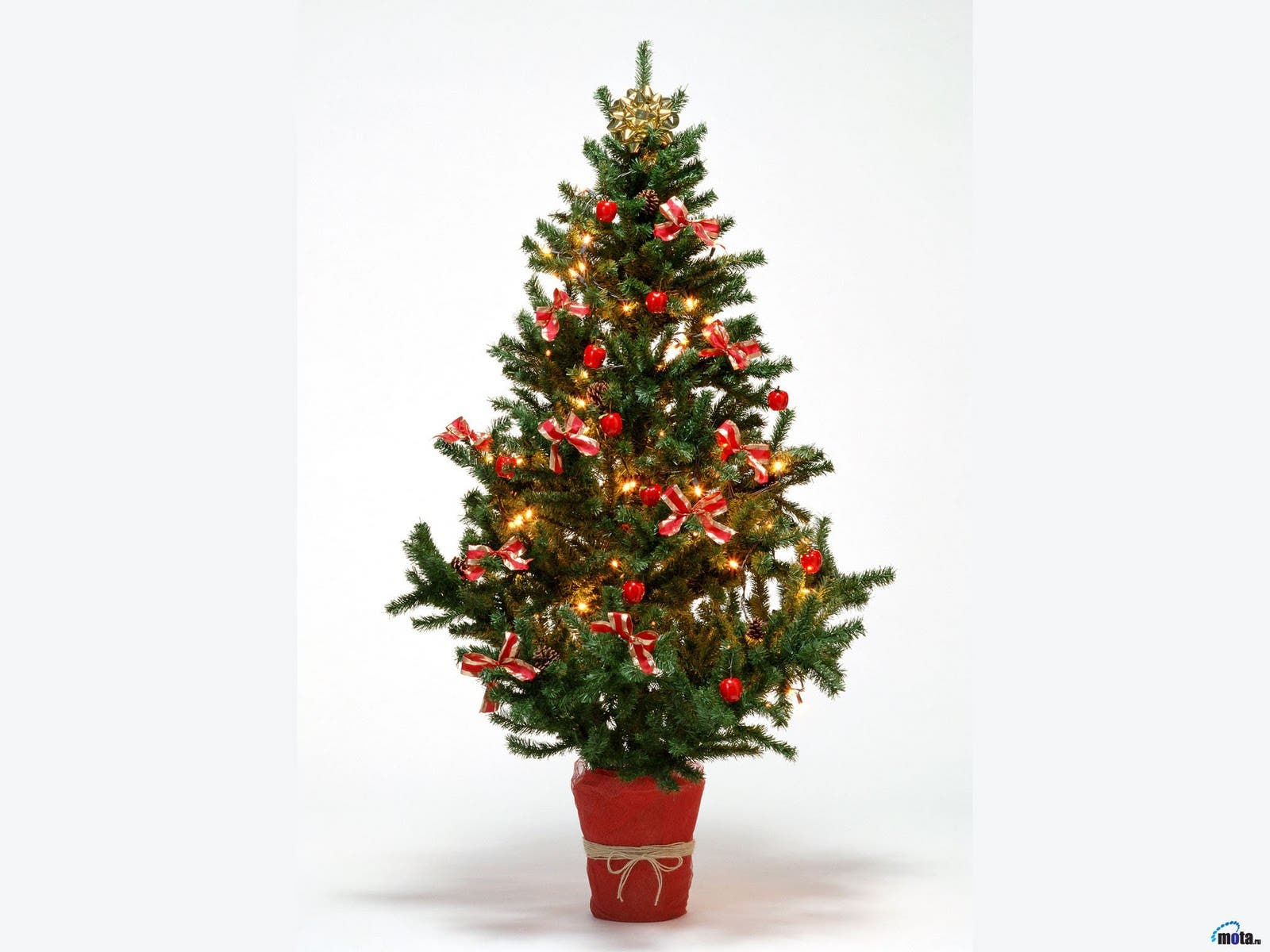 Village Christmas Tree Pickup And Holiday Light Recycling