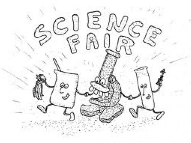 Ct State Science Fair At Quinnipiac