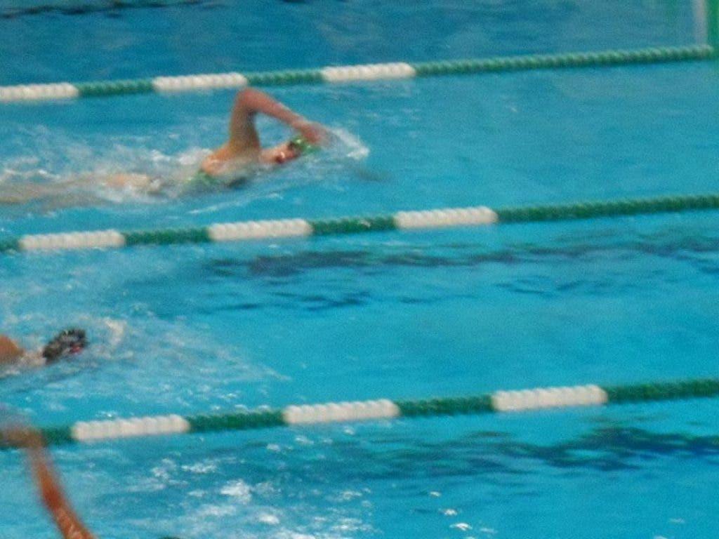 York Hosts Ihsa Girls Swim Amp Dive Sectional Saturday
