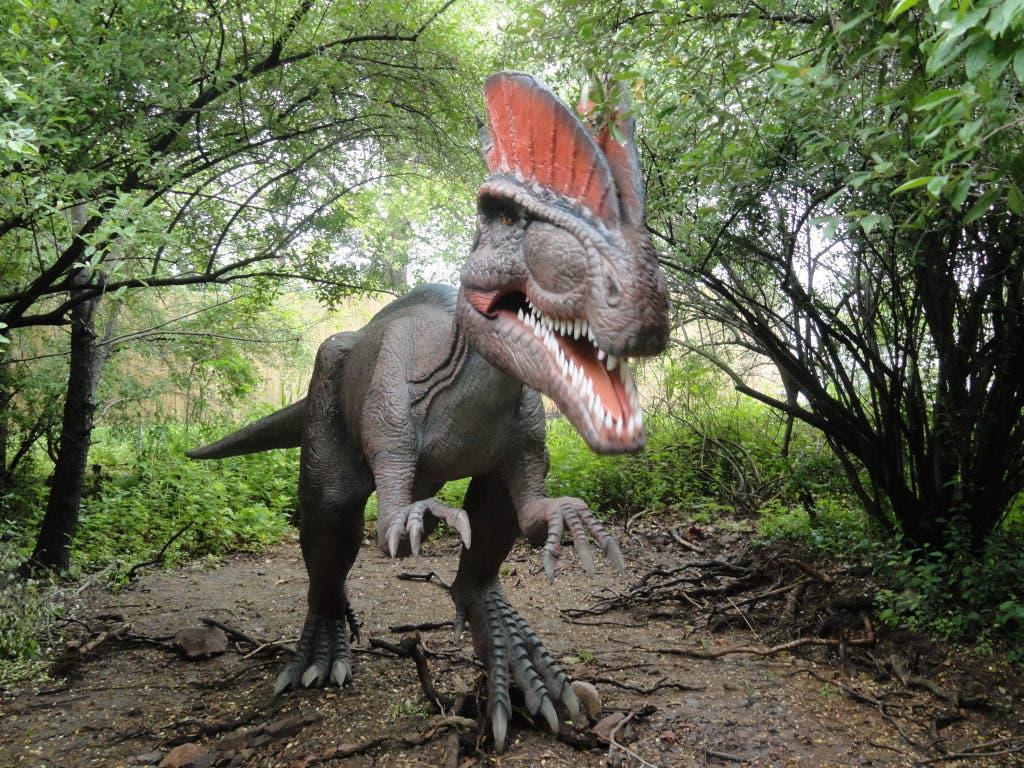 Secaucus Dinosaur Park Opens with a Roar   Jefferson, NJ Patch
