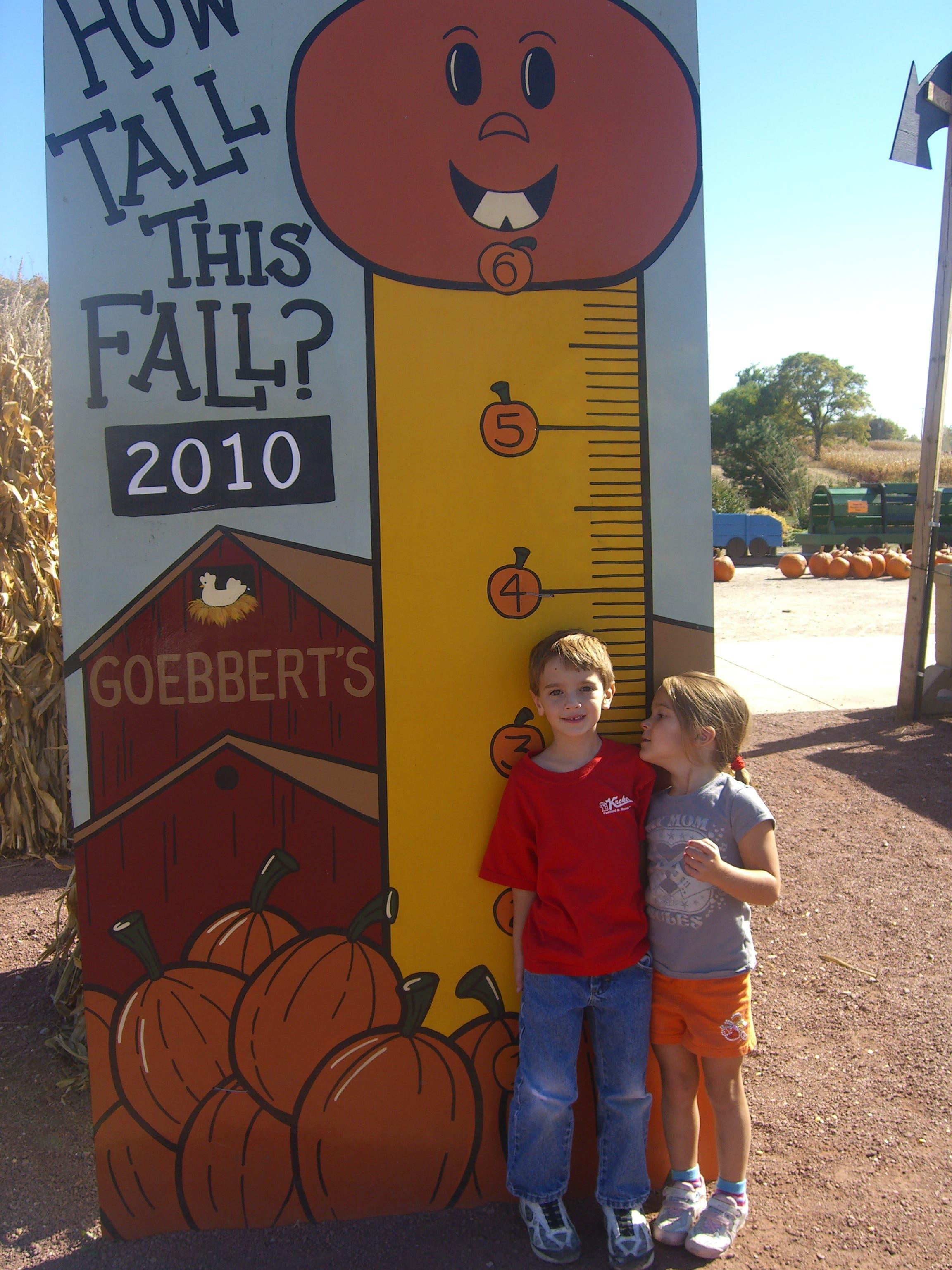Goebbert S Pumpkin Farm Ready For Fall Barrington Il Patch