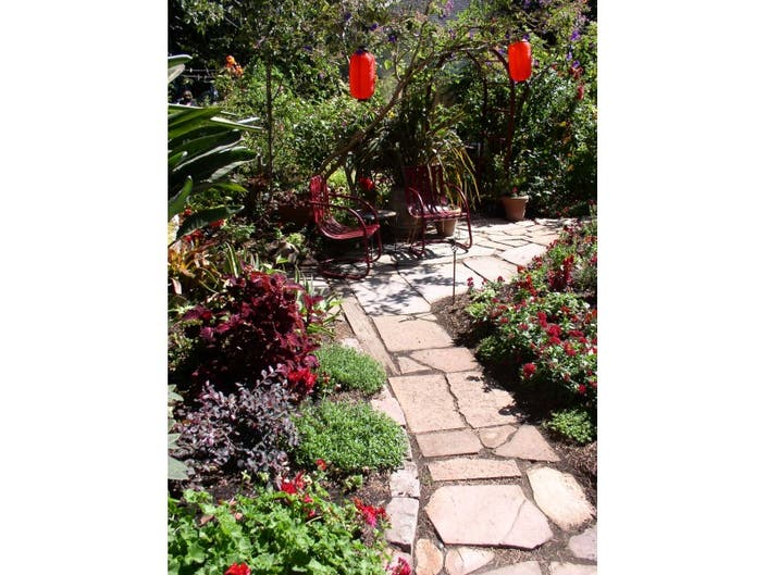 Lawn to Garden Party - learn how to convert your lawn without ripping it out!