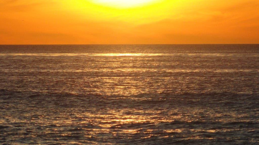 Surfer Found Dead Near Tourmaline Beach, Body Had Possible