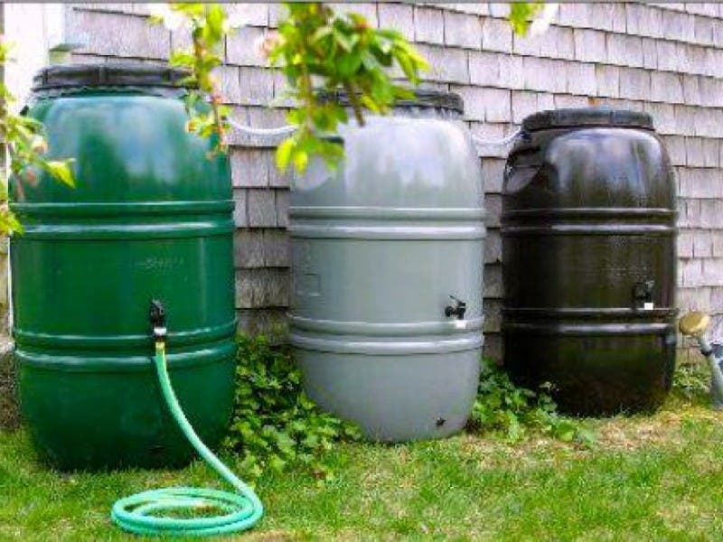 Rain Barrel Tips For This Springs Wet Weather