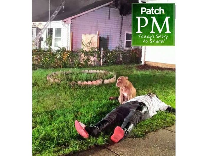 Dog Guarded Owner After Fire  Now, It's Got to Go | Patch PM | Bowie