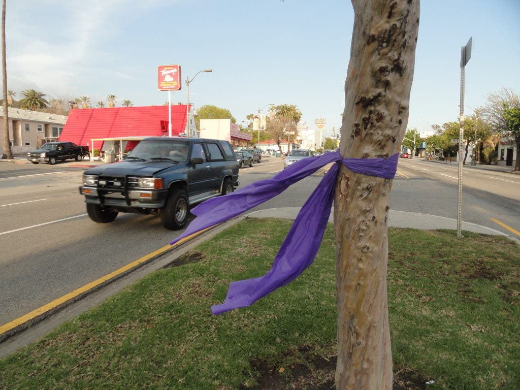 Why Trees Along Colorado Boulevard Have Purple Ribbons