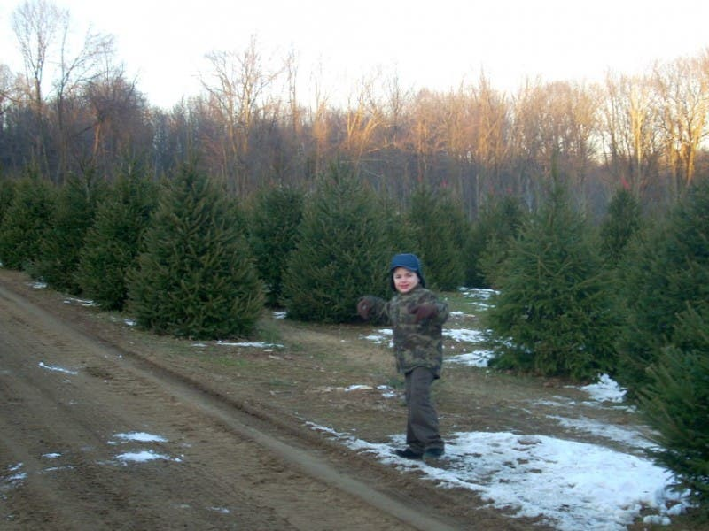 Where To Cut Your Own Christmas Trees In New Jersey - Where To Cut Your Own Christmas Trees In New Jersey Paramus, NJ Patch