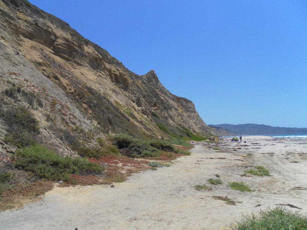 Blacks Beach Exposed: Patch Bares it All   La Jolla, CA Patch