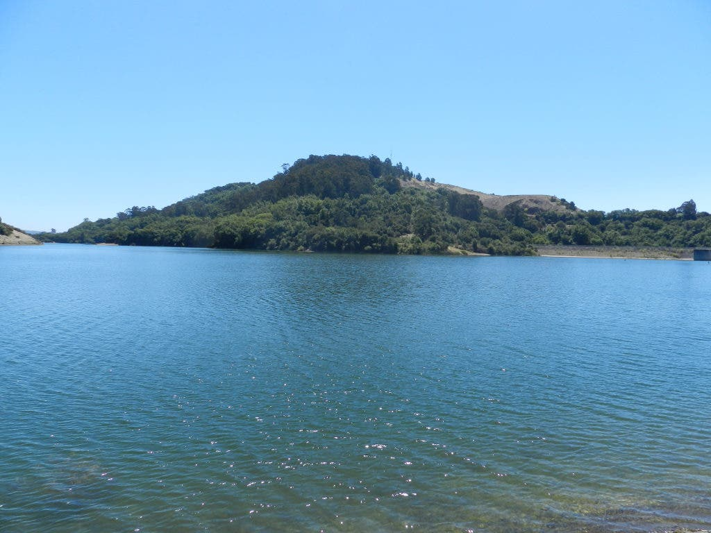 Lake Chabot: Have Fun in Your Own Back Yard | San Leandro
