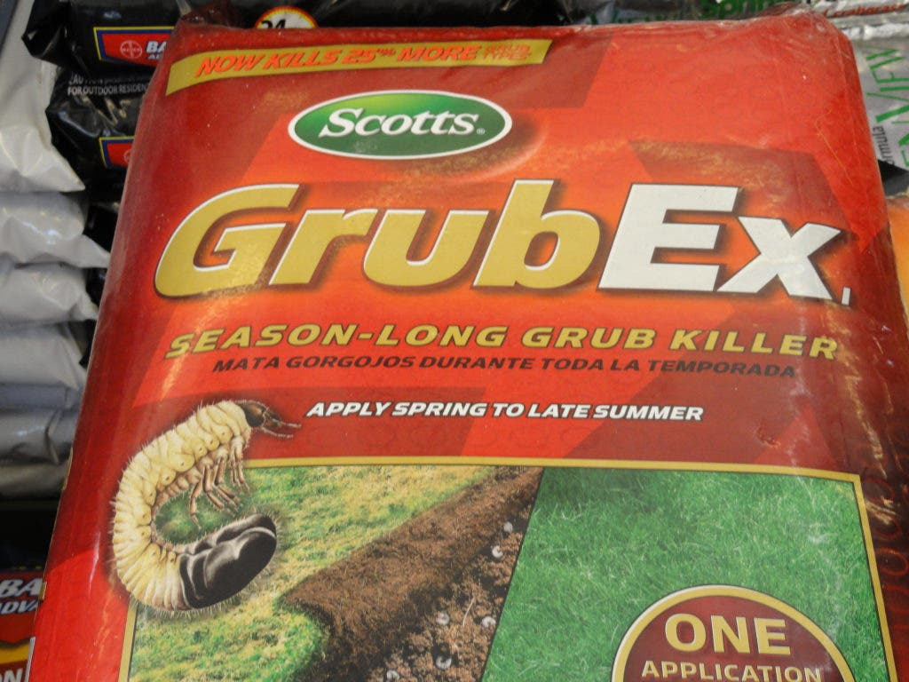How To Kill Grubs Local Gardening Expert Outlines Fight Plan
