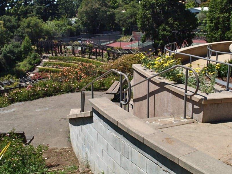 berkeley rose garden needs a little help from its friends 0 - Berkeley Rose Garden