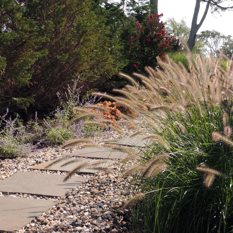 Landscape Design Principles And Elements Of Composition Texture