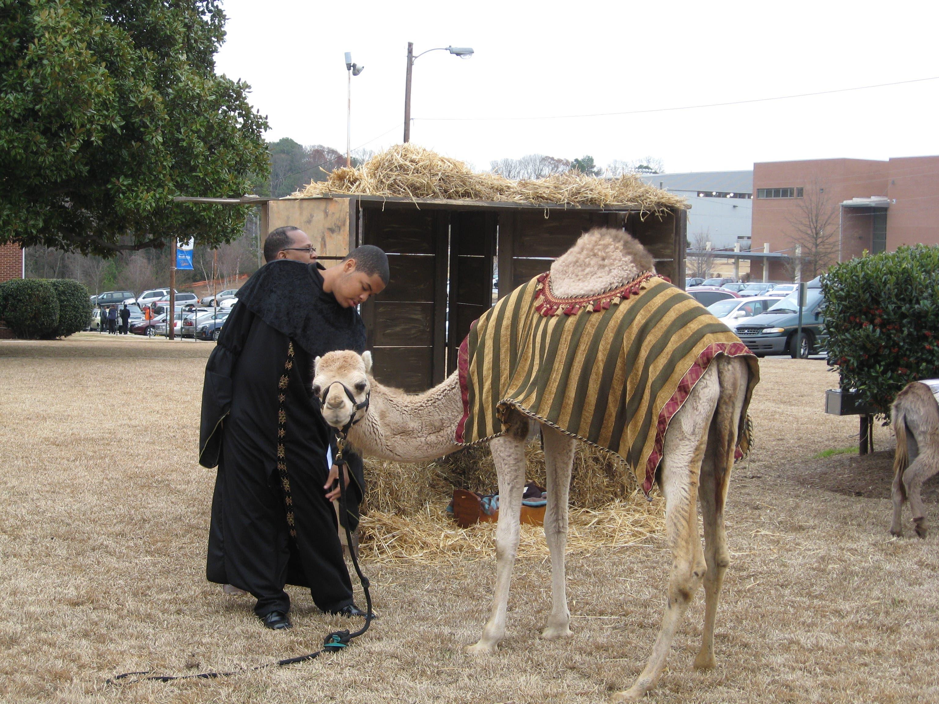 Do 7th Day Adventists Celebrate Christmas.Berean Seventh Day Adventists Celebrate Christmas Stop