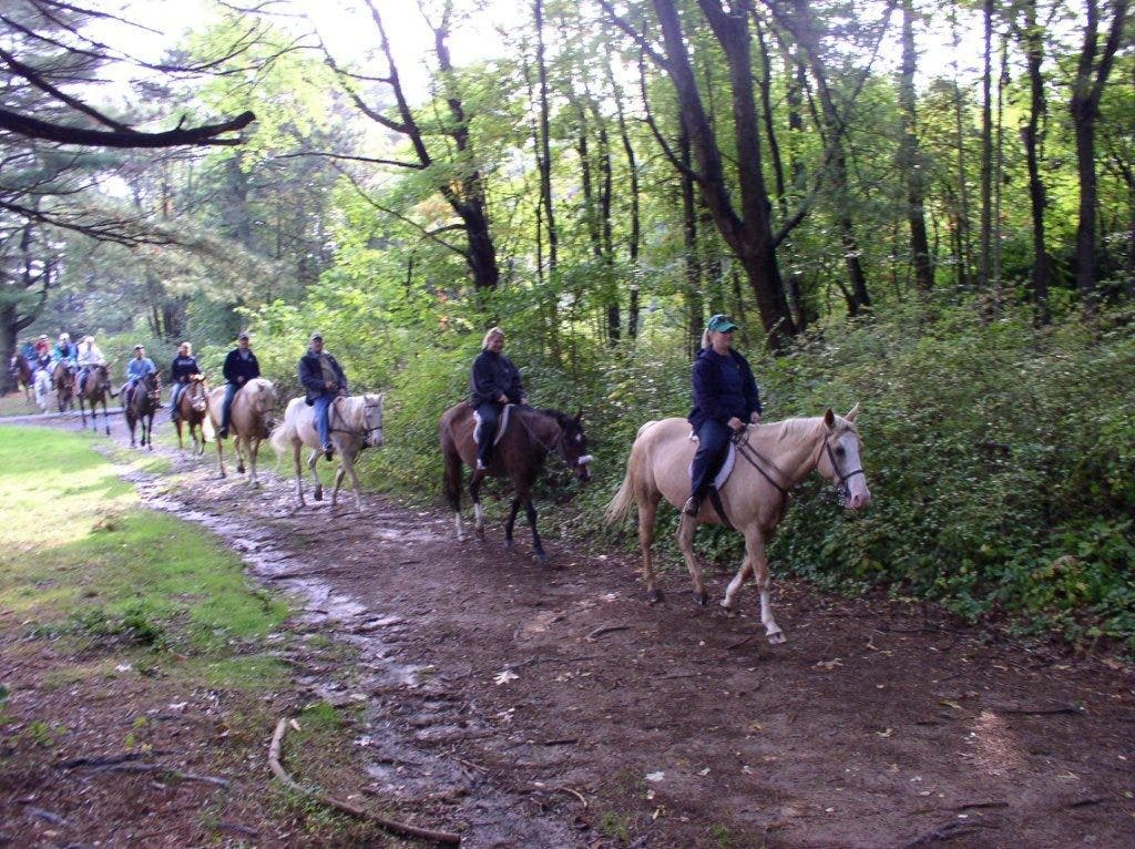 Horseback Rides Start Up Again at Watchung Stable   Clark