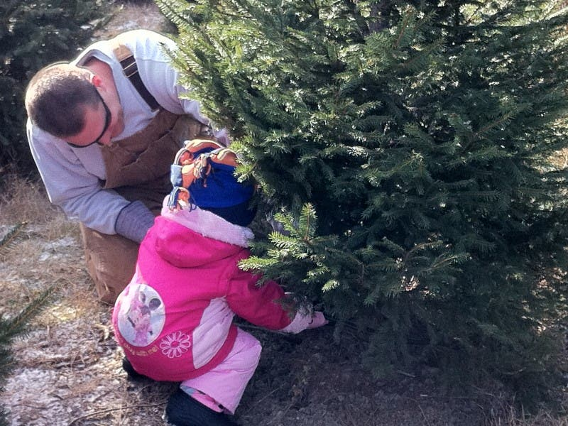... Ide Christmas Tree Farm Opens Friday-0 ... - Ide Christmas Tree Farm Opens Friday Woodridge, IL Patch