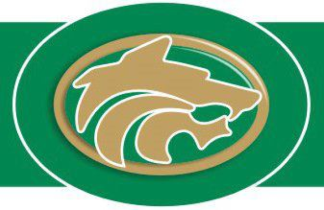 Team Of The Century Buford Wolves Win State Football