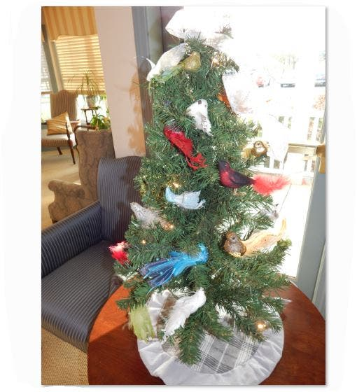 Christmas Tree and Outdoor Light Fire Safety Tips   Framingham, MA Patch