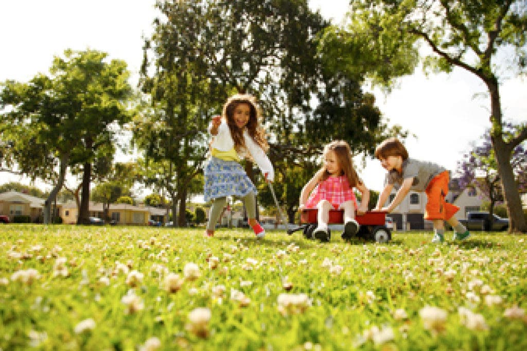 Allergies Are Seasonal, and Now is the Season in Marin   San