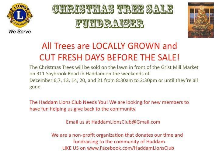 Haddam Christmas Tree Sale Fundraiser Hosted By Lions Club