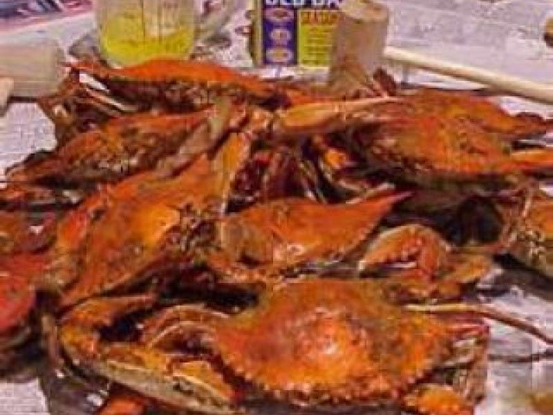Two Annapolis Restaurants Name Best Seafood Dives Icymi
