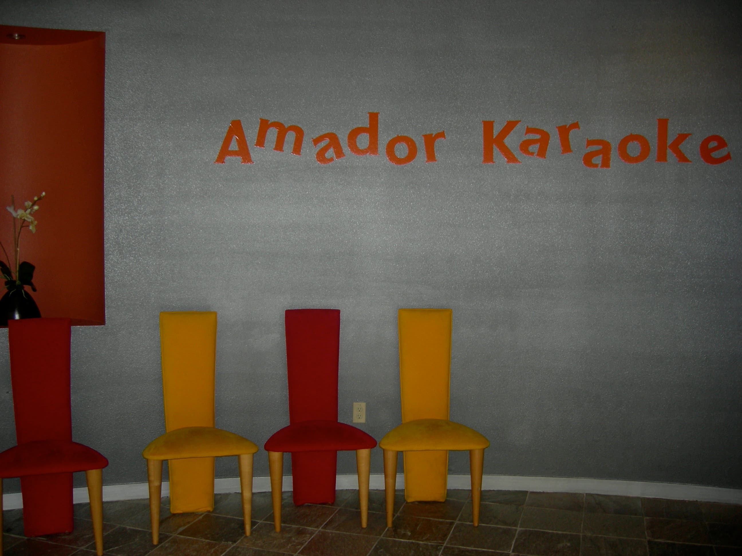 Amador Karaoke: Make Everyone at Your Party Feel Like a Star