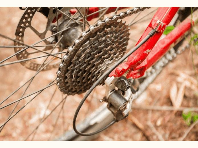 Bike-Sharing Program, Pedal Festivals Among Plans To Get