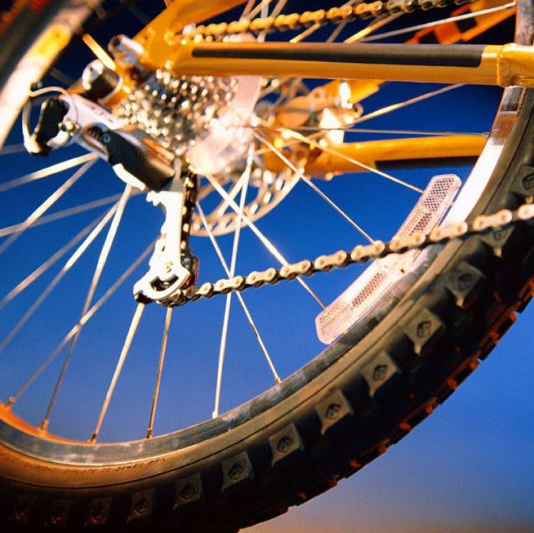 Six Family-Friendly Bike Rides Near You | Rohnert Park, CA Patch