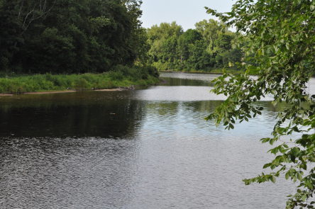 Trout Stocking in the Farmington River and What You Can Take Home
