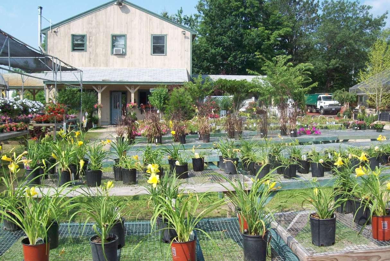 Delahunty Nurseries