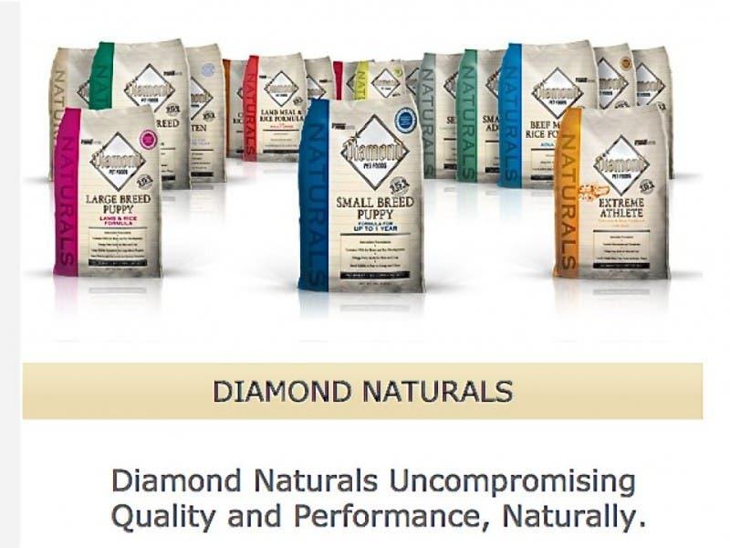 Diamond Pet Food Recalls Dog Food Lilburn Ga Patch