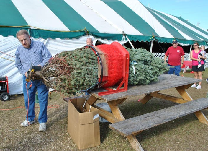Christmas Tree Sales to Benefit Knights of Columbus ...