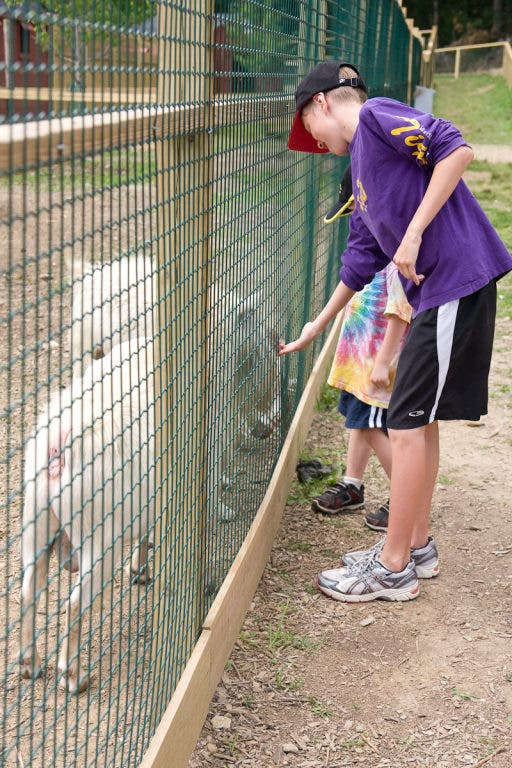 Kid-Friendly Places: Smolak Farms and The Champion Factory