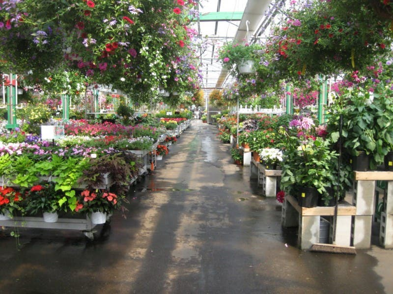 The Dees Nursery Florist Annual 4th Of July