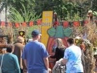 Dees Nursery Fall Festival 2
