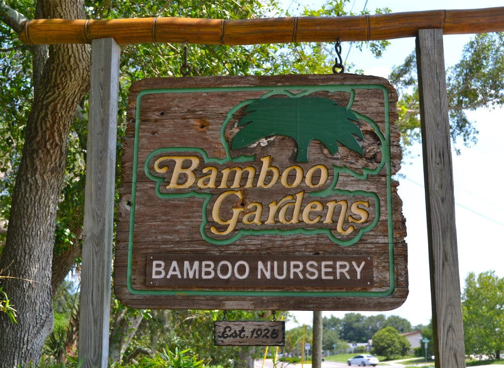 Bamboo Gardens Still Thriving After 20 Years Palm Harbor