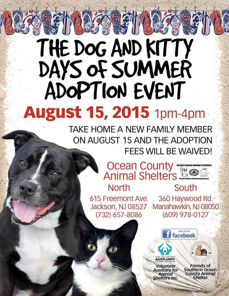 Ocean County Animal Shelters Brimming, Free Adoption Event