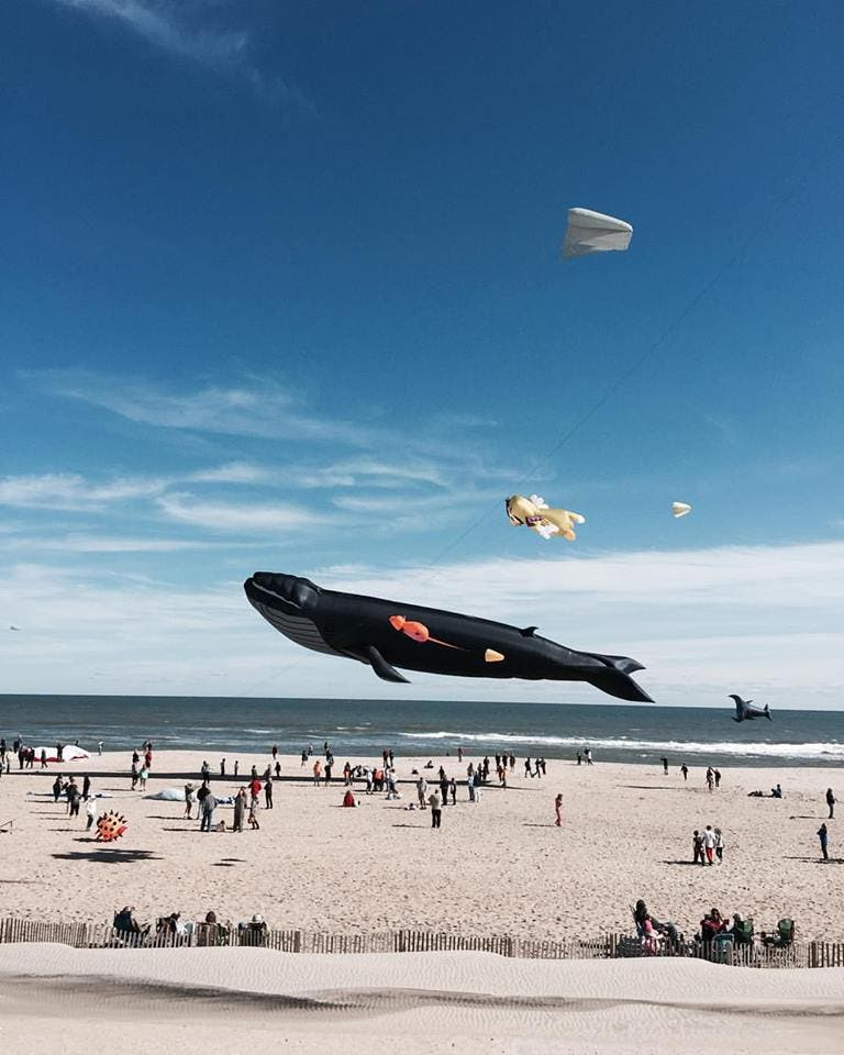 Long Beach Island New Jersey: International Kite Festival Continues On Long Beach Island
