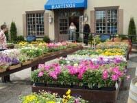 ... Hastings Garden Center Opens In Peachtree Corners 2 ...