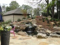 ... Hastings Garden Center Opens In Peachtree Corners 4 ...