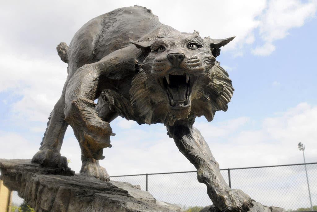 Bobcat Sculpture Unveiled At Bel Air High School | Bel Air ...
