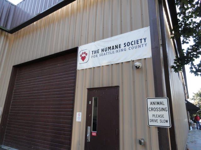 Animal Care Associate Job In Fort Lauderdale At Humane Society Of Broward County Lensa
