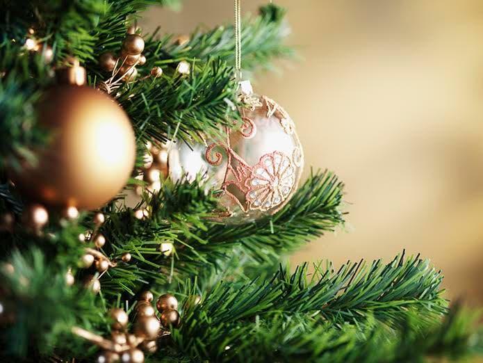 Christmas Trees For Sale.Christmas Trees For Sale At Fairfax High School Fairfax